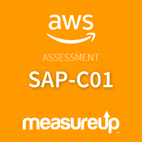 Assessment SAP-C01: AWS Certified Solutions Architect - Professional